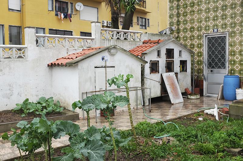 Vila Franca de Xira 01